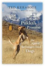 Book Reviews: Pukka's Promise