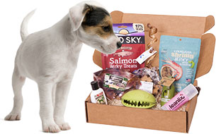 Pet Reviews: Happy Dog Box