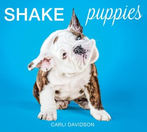 shake puppies cover