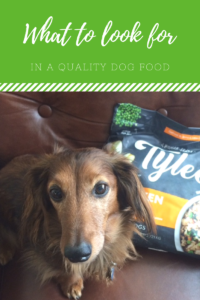 Chewy.com Introduces Tylee's Cooked Human Grade Dog Food