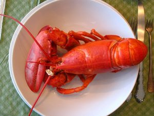 Tips on buying live lobsters