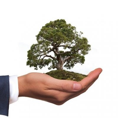 How to Communicate Your Business' Eco Credentials